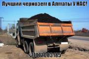 Чернозём горный