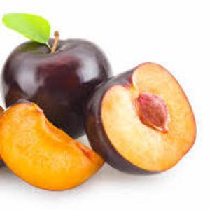 Саженцы плодово-ягодных культур