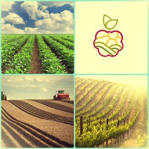 Саженцы плодово-ягодных в Костанае.