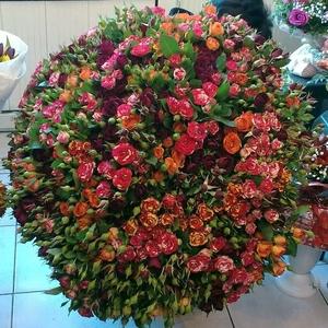 101 спрей-роза 70 см