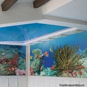 Фреска в бассейн