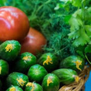 Средства защиты растений и агрохимикаты: гербициды,  инсектициды,  фунги