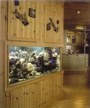 изготовление и заселение морских и пресноводных аквариумов